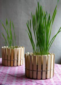 Macetereo de pinzas de madera