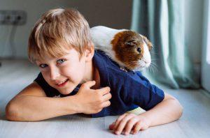 niños con una mascota más autoestima